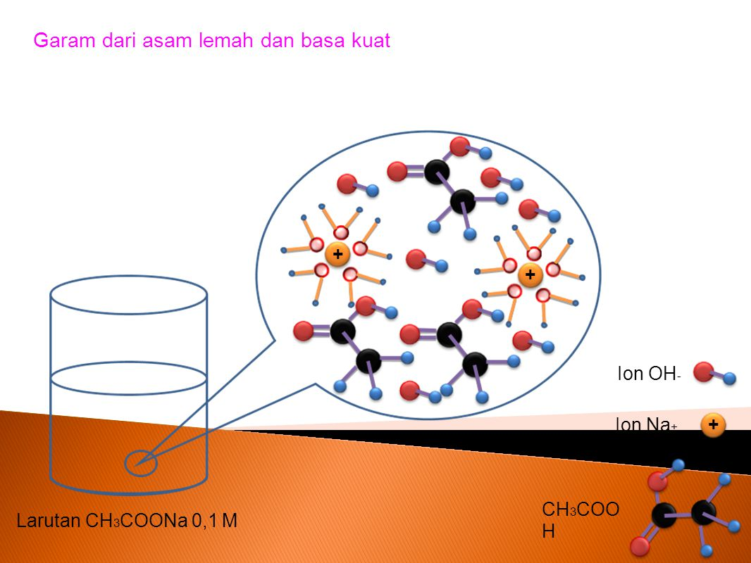 Garam dari asam lemah dan basa kuat Larutan CH 3 COONa 0,1 M + + + Ion Na + Ion OH - CH 3 COO H