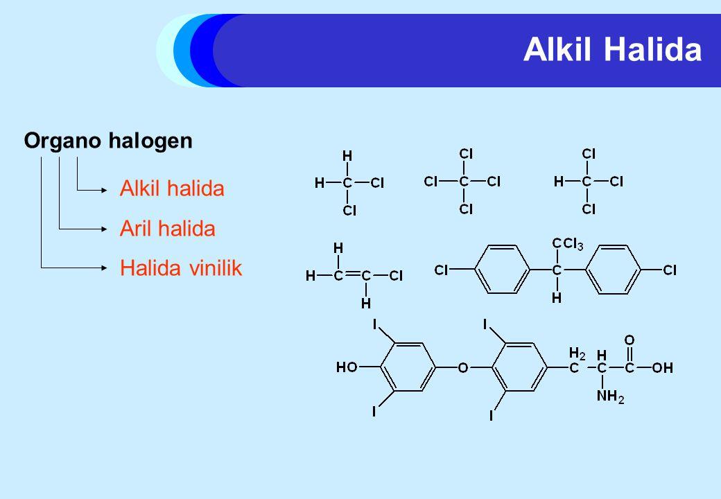Alkil Halida Organo halogen Alkil halida Aril halida Halida vinilik