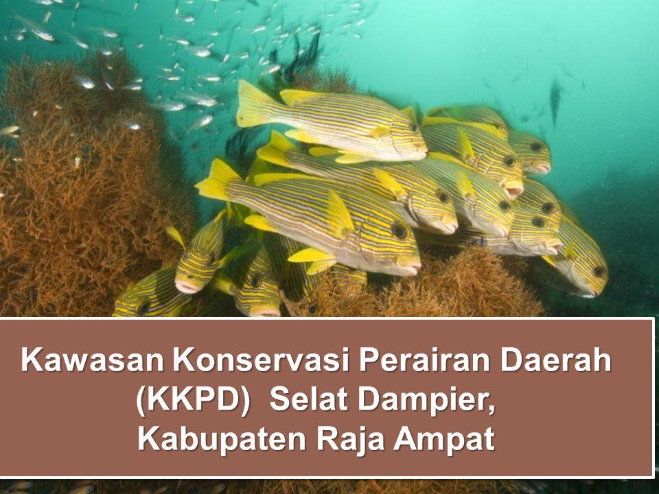 Kawasan Konservasi Perairan Daerah (KKPD) Selat Dampier, Kabupaten Raja Ampat Kawasan Konservasi Perairan Daerah (KKPD) Selat Dampier, Kabupaten Raja
