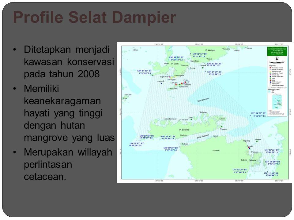 Profile Selat Dampier Ditetapkan menjadi kawasan konservasi pada tahun 2008 Memiliki keanekaragaman hayati yang tinggi dengan hutan mangrove yang luas Merupakan willayah perlintasan cetacean.
