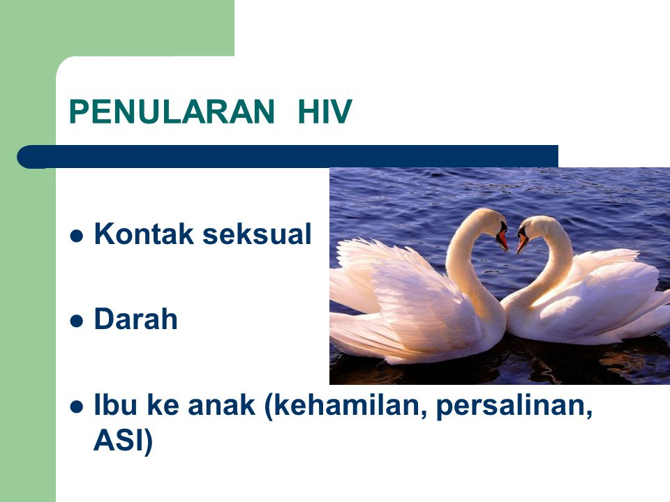 PENULARAN HIV Kontak seksual Darah Ibu ke anak (kehamilan, persalinan, ASI)