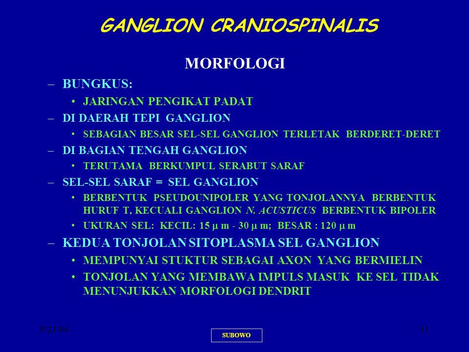 8/21/0411 GANGLION CRANIOSPINALIS MORFOLOGI –BUNGKUS: JARINGAN PENGIKAT PADAT –DI DAERAH TEPI GANGLION SEBAGIAN BESAR SEL-SEL GANGLION TERLETAK BERDER