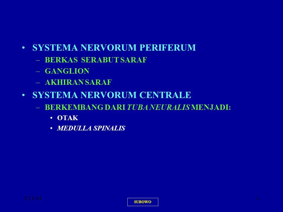 8/21/042 SYSTEMA NERVORUM PERIFERUM –BERKAS SERABUT SARAF –GANGLION –AKHIRAN SARAF SYSTEMA NERVORUM CENTRALE –BERKEMBANG DARI TUBA NEURALIS MENJADI: O