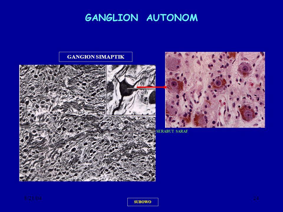 8/21/0424 SUBOWO GANGLION AUTONOM GANGION SIMAPTIK SERABUT SARAF