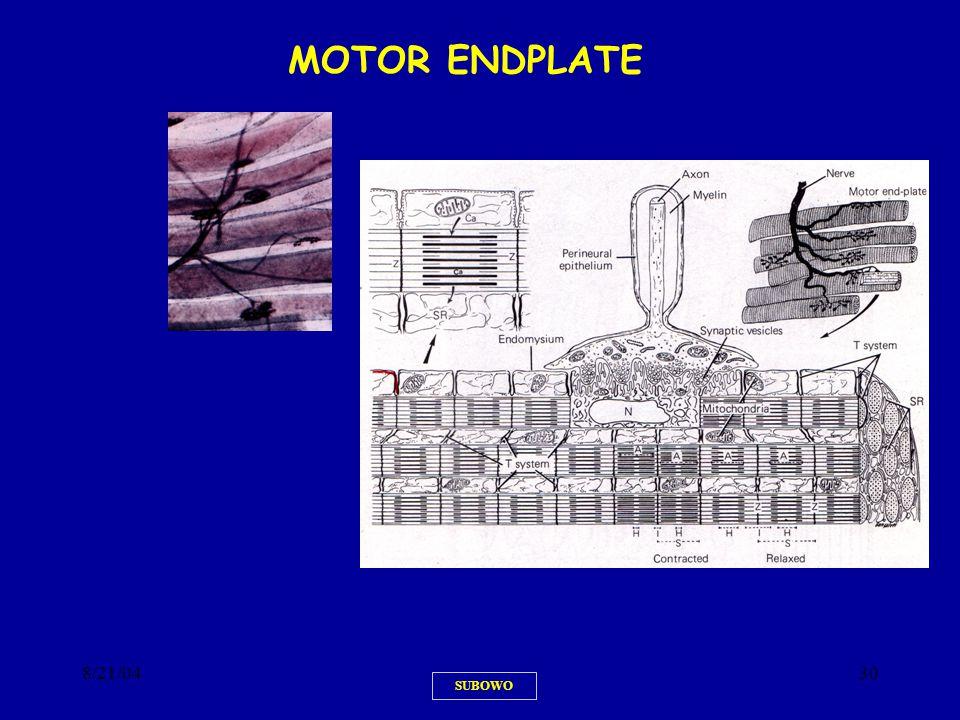 8/21/0430 SUBOWO MOTOR ENDPLATEMOTOR