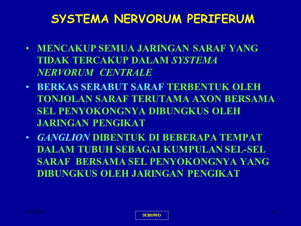 8/21/044 SYSTEMA NERVORUM PERIFERUM MENCAKUP SEMUA JARINGAN SARAF YANG TIDAK TERCAKUP DALAM SYSTEMA NERVORUM CENTRALE BERKAS SERABUT SARAF TERBENTUK O
