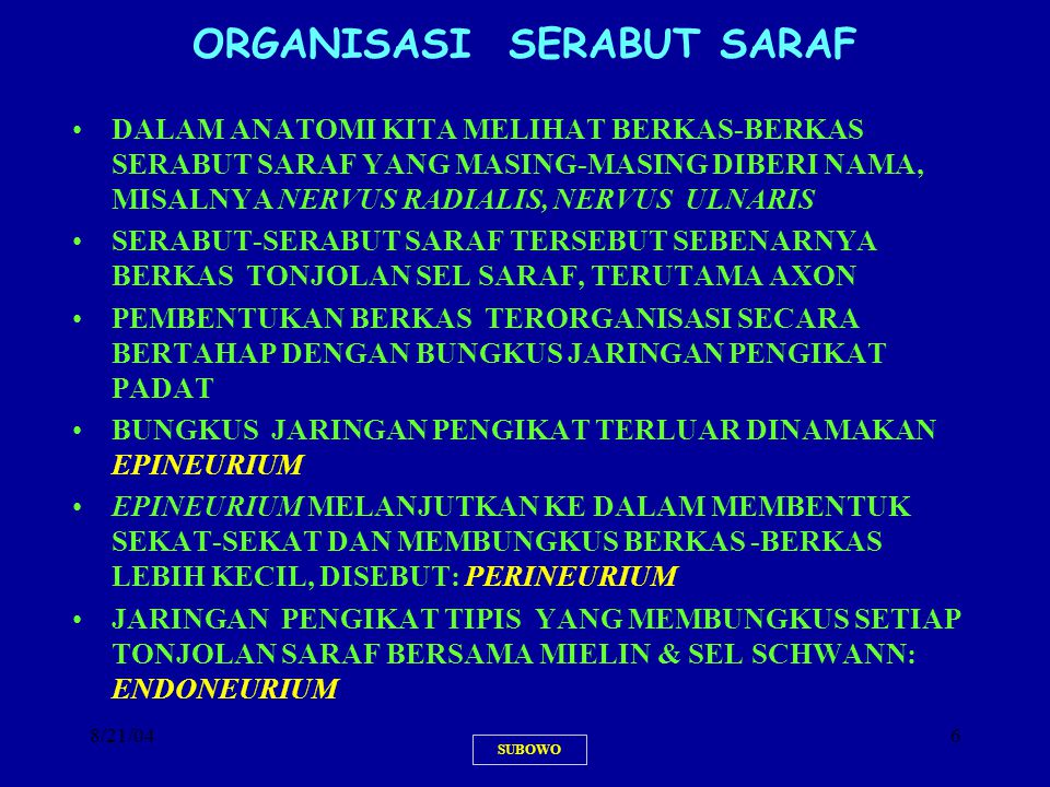 8/21/046 ORGANISASI SERABUT SARAF DALAM ANATOMI KITA MELIHAT BERKAS-BERKAS SERABUT SARAF YANG MASING-MASING DIBERI NAMA, MISALNYA NERVUS RADIALIS, NER