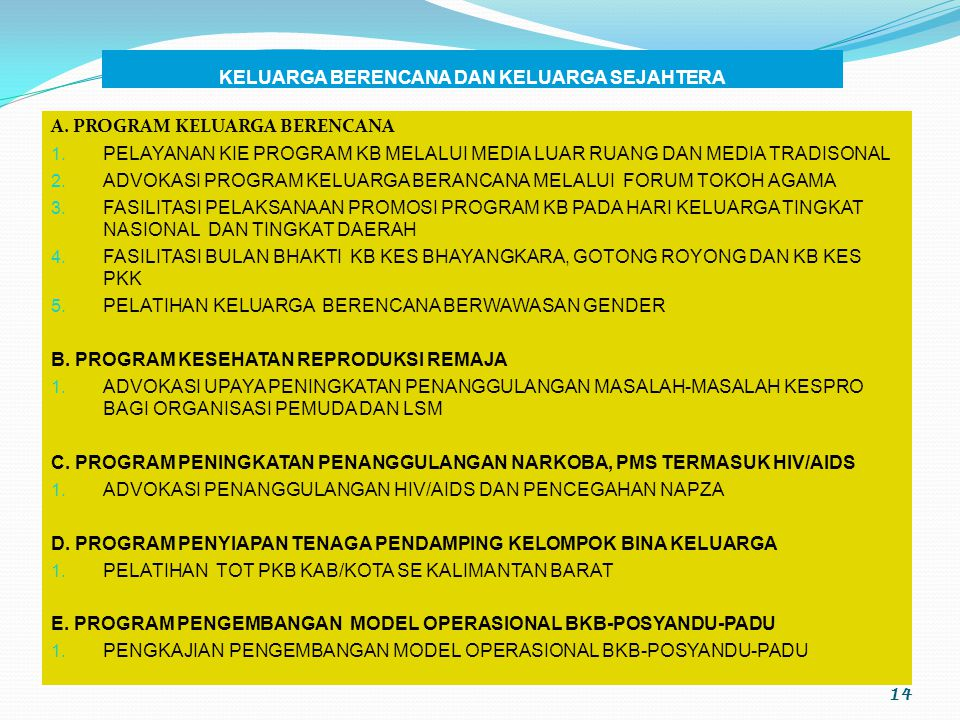 13 C. PROGRAM PENINGKATAN KUALITAS HIDUP DAN PERLINDUNGAN PEREMPUAN AKSELERASI KETERWAKILAN PEREMPUAN PADA PEMILU 2009 SOSIALISASI DAN ADVOKASI PENANG