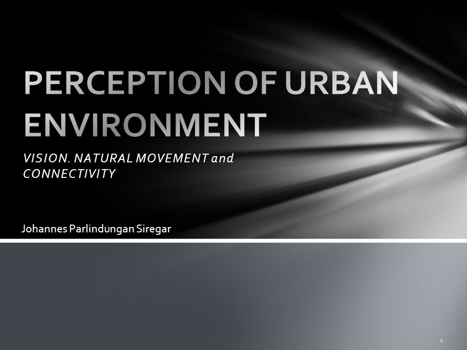 VISION. NATURAL MOVEMENT and CONNECTIVITY 1 Johannes Parlindungan Siregar