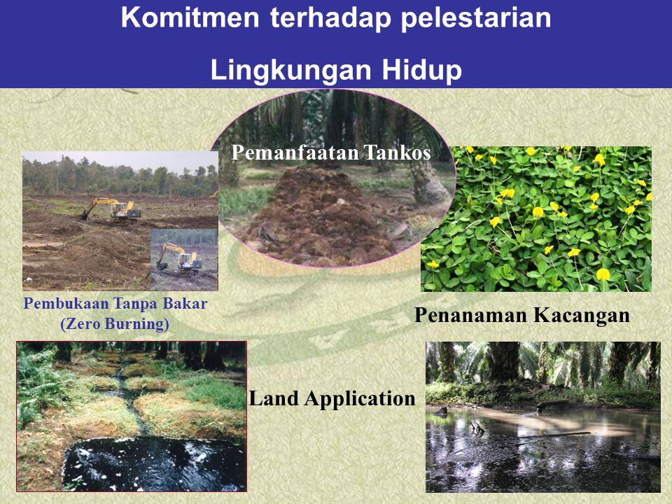 Land Application Pembukaan Tanpa Bakar (Zero Burning) Penanaman Kacangan Pemanfaatan Tankos Komitmen terhadap pelestarian Lingkungan Hidup