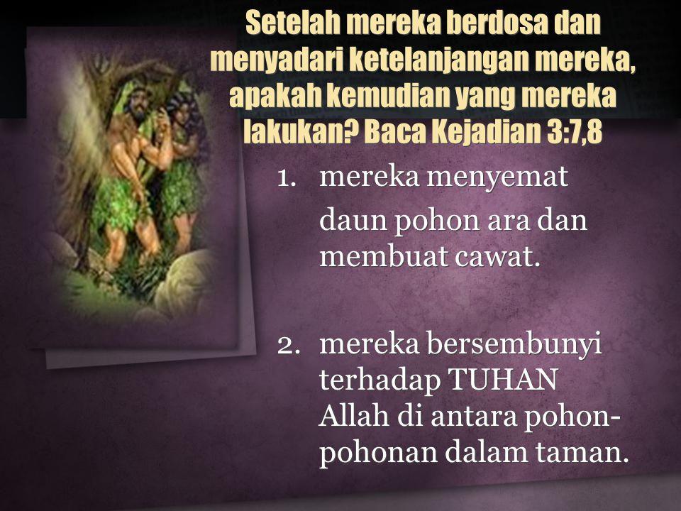 Setelah mereka berdosa dan menyadari ketelanjangan mereka, apakah kemudian yang mereka lakukan? Baca Kejadian 3:7,8 1.mereka menyemat daun pohon ara d