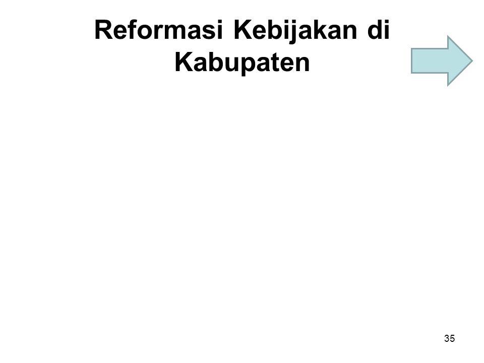 Reformasi Kebijakan di Kabupaten 35