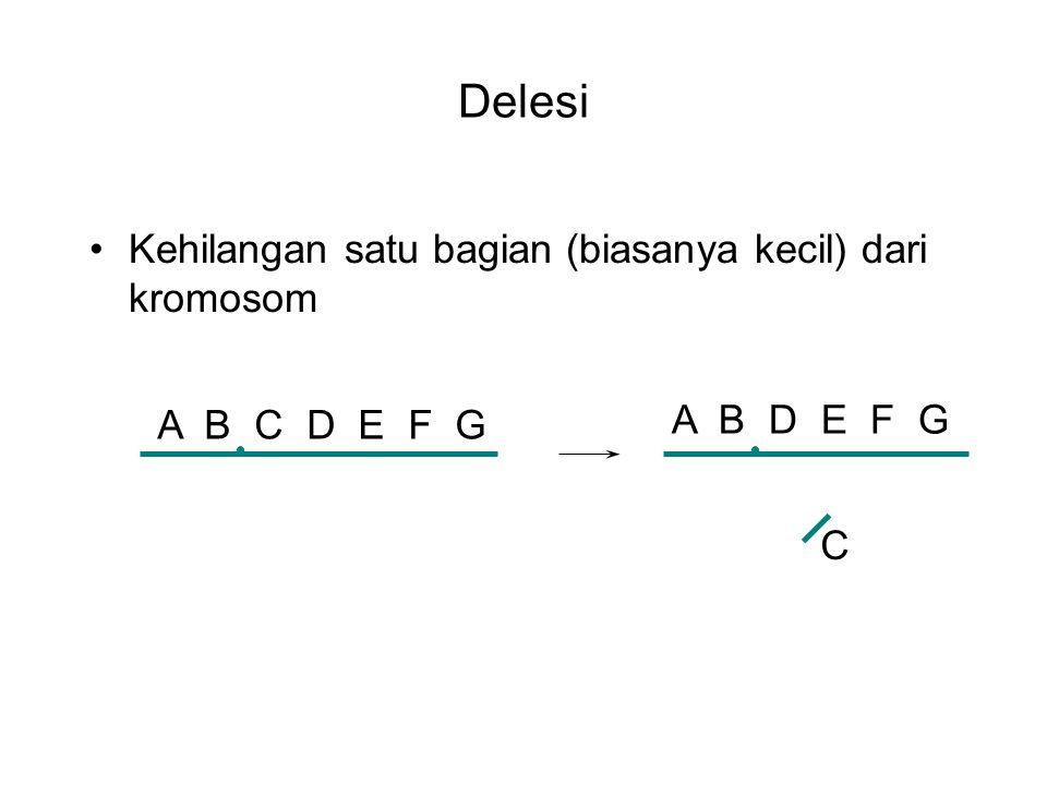 Delesi Kehilangan satu bagian (biasanya kecil) dari kromosom A B C D E F G A B D E F G C