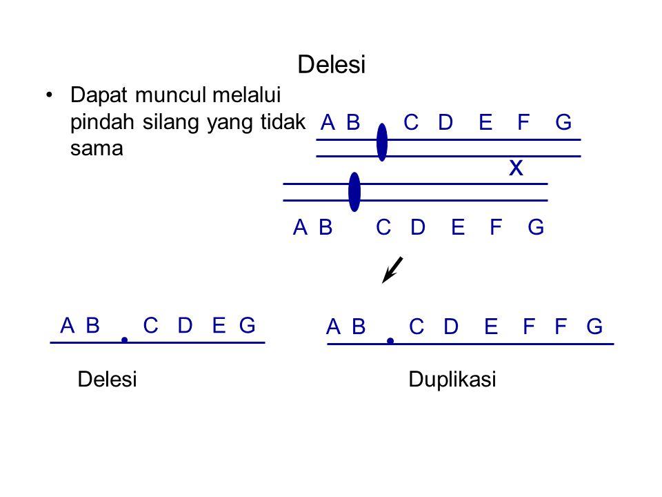 Delesi Dapat muncul melalui pindah silang yang tidak sama A B C D E F G x A B C D E F F G A B C D E G DelesiDuplikasi