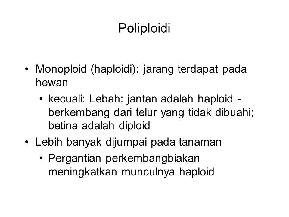 Poliploidi Monoploid (haploidi): jarang terdapat pada hewan kecuali: Lebah: jantan adalah haploid - berkembang dari telur yang tidak dibuahi; betina a