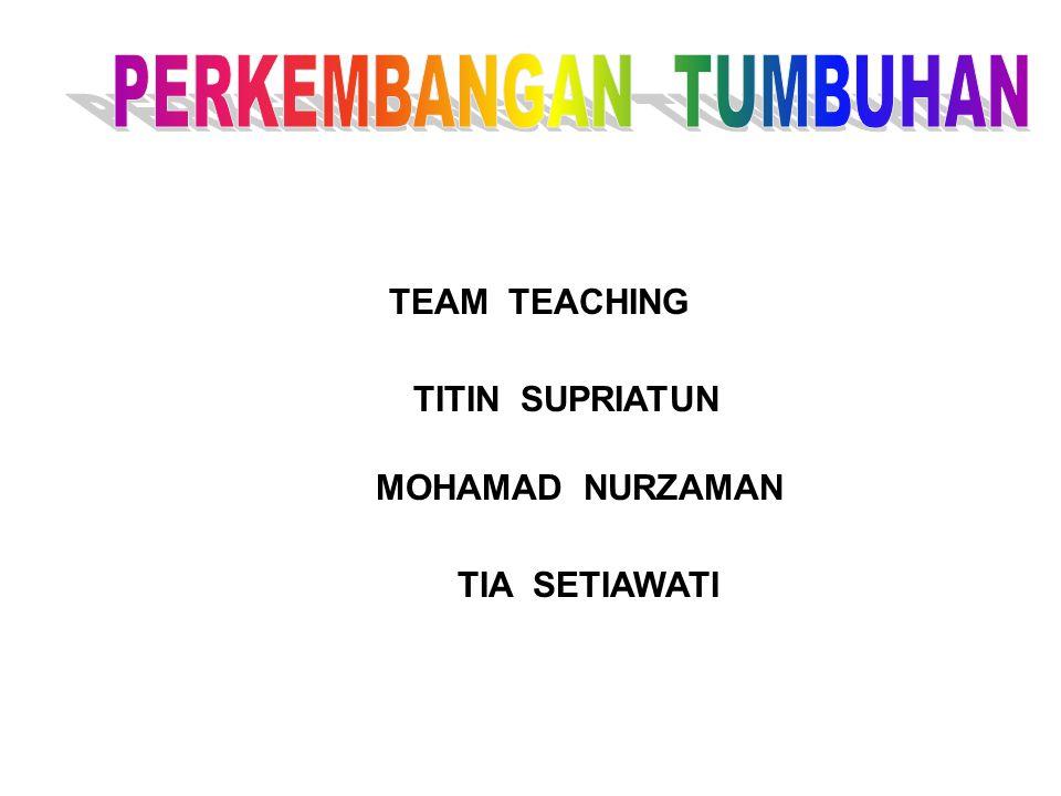 TEAM TEACHING TITIN SUPRIATUN MOHAMAD NURZAMAN TIA SETIAWATI