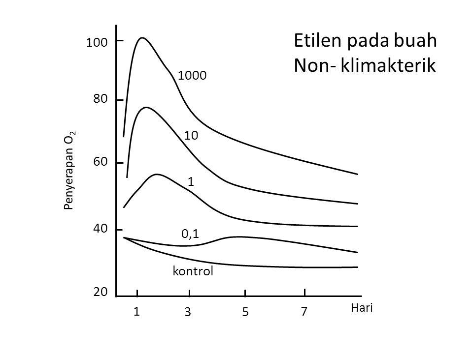 Hari 1 35 7 20 40 60 80 100 Penyerapan O 2 kontrol 0,1 1 10 1000 Etilen pada buah Non- klimakterik