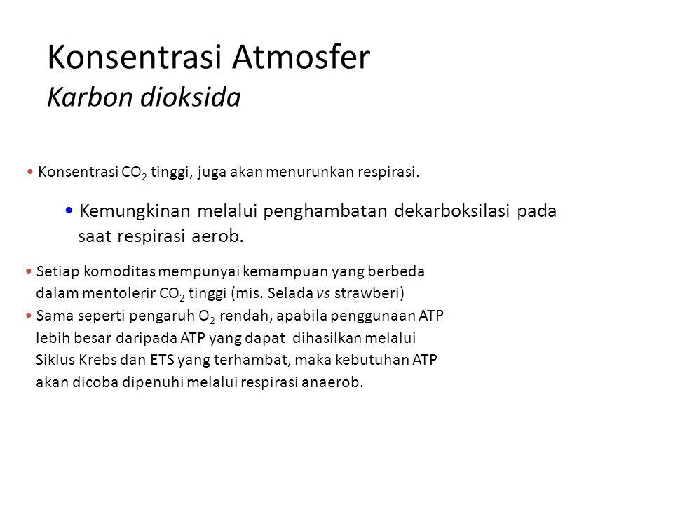 Konsentrasi Atmosfer Karbon dioksida Konsentrasi CO 2 tinggi, juga akan menurunkan respirasi. Kemungkinan melalui penghambatan dekarboksilasi pada saa