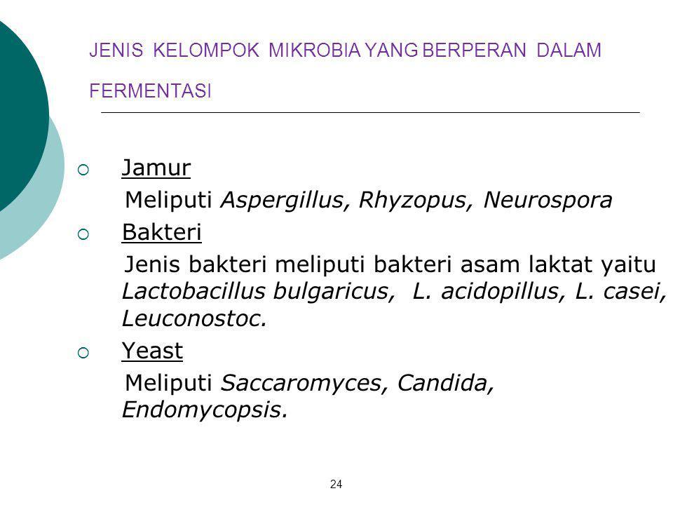 24 JENIS KELOMPOK MIKROBIA YANG BERPERAN DALAM FERMENTASI  Jamur Meliputi Aspergillus, Rhyzopus, Neurospora  Bakteri Jenis bakteri meliputi bakteri