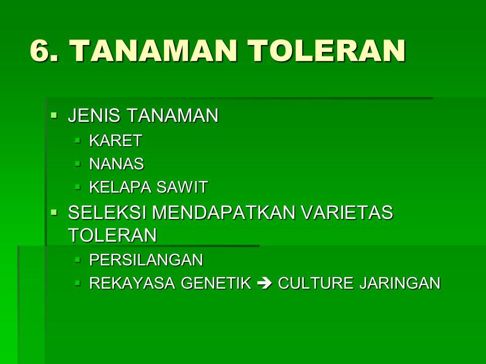 6. TANAMAN TOLERAN  JENIS TANAMAN  KARET  NANAS  KELAPA SAWIT  SELEKSI MENDAPATKAN VARIETAS TOLERAN  PERSILANGAN  REKAYASA GENETIK  CULTURE JA