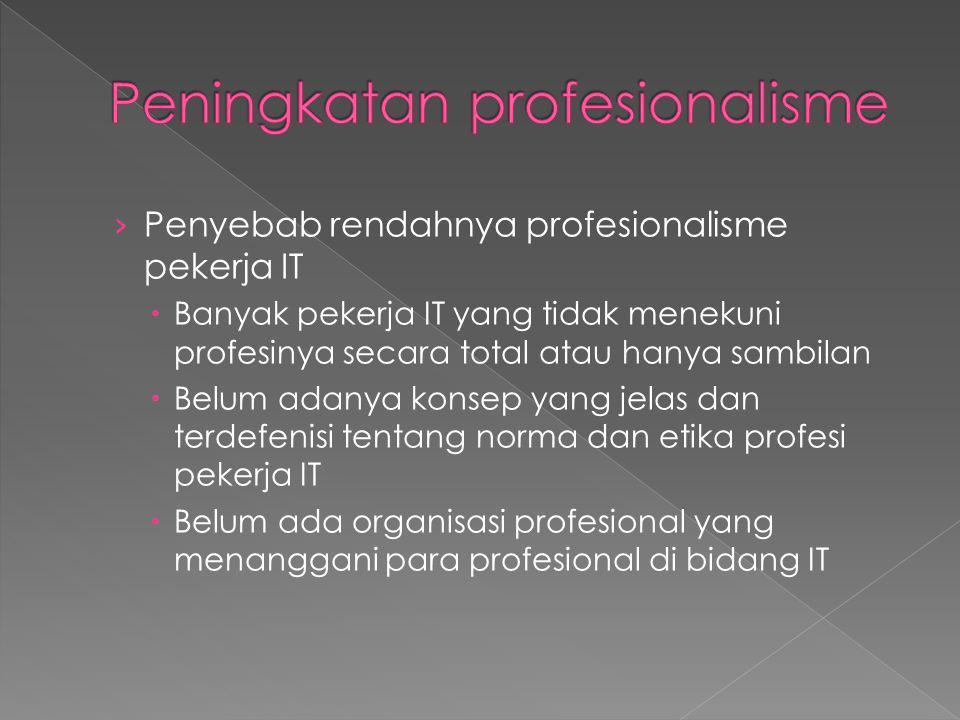 › Penyebab rendahnya profesionalisme pekerja IT  Banyak pekerja IT yang tidak menekuni profesinya secara total atau hanya sambilan  Belum adanya konsep yang jelas dan terdefenisi tentang norma dan etika profesi pekerja IT  Belum ada organisasi profesional yang menanggani para profesional di bidang IT