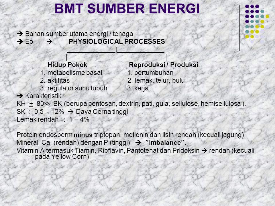  BMT sumber energi asal biji-bijian/butir-butiran : - Bila digunakan dalam jumlah banyak  DIGESTIVE DISTURBANCES, sehingga ratio HMT : Konsentrat harus diperhatikan.