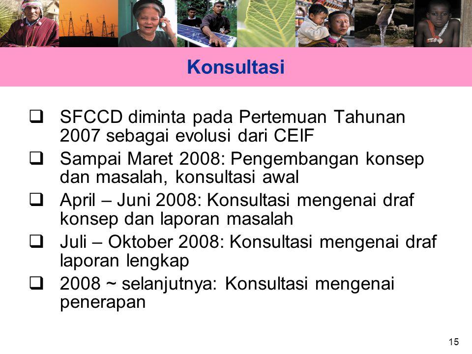 15 Konsultasi  SFCCD diminta pada Pertemuan Tahunan 2007 sebagai evolusi dari CEIF  Sampai Maret 2008: Pengembangan konsep dan masalah, konsultasi a
