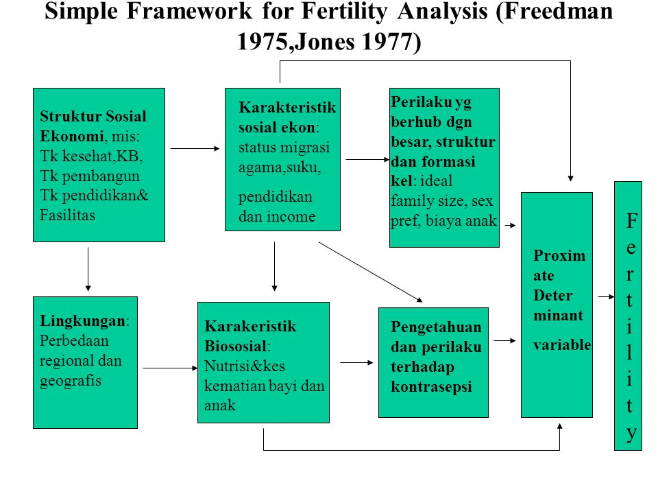 Simple Framework for Fertility Analysis (Freedman 1975,Jones 1977) Struktur Sosial Ekonomi, mis: Tk kesehat,KB, Tk pembangun Tk pendidikan& Fasilitas