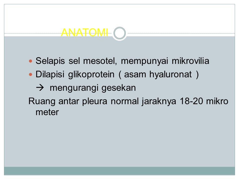 ANATOMI Selapis sel mesotel, mempunyai mikrovilia Dilapisi glikoprotein ( asam hyaluronat )  mengurangi gesekan Ruang antar pleura normal jaraknya 18-20 mikro meter