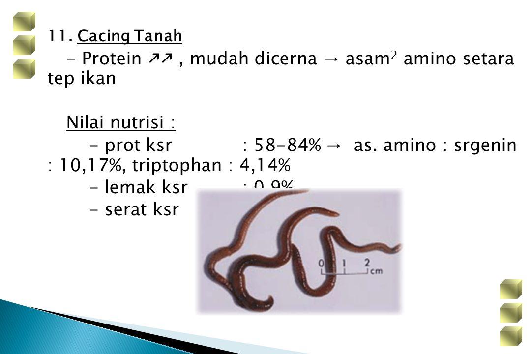 11. Cacing Tanah - Protein , mudah dicerna → asam 2 amino setara tep ikan Nilai nutrisi : - prot ksr: 58-84% → as. amino : srgenin : 10,17%, triptop