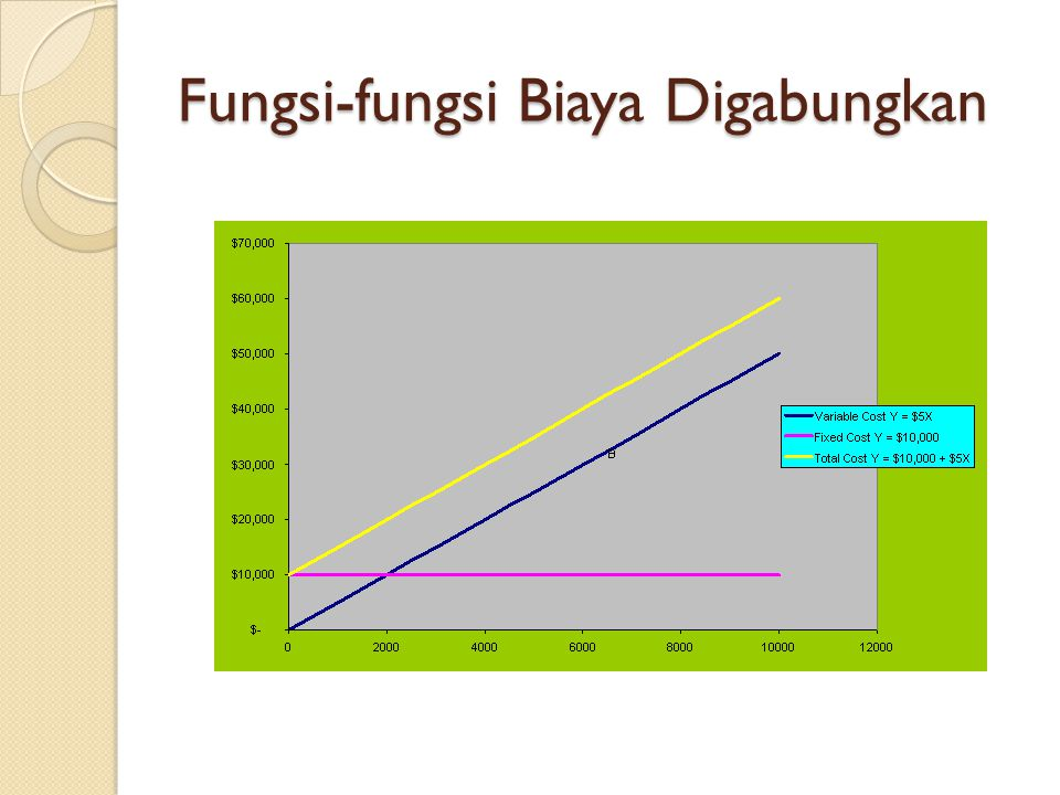 Fungsi-fungsi Biaya Digabungkan