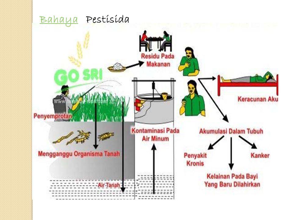 BahayaBahaya Pestisida