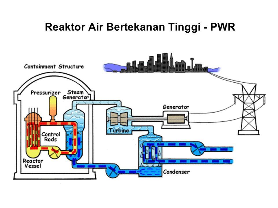 PLTN JENIS PWR RCP SG Reactor