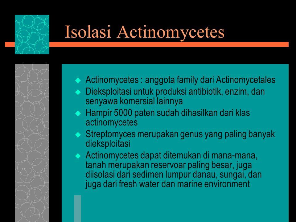 Isolasi Actinomycetes  Actinomycetes : anggota family dari Actinomycetales  Dieksploitasi untuk produksi antibiotik, enzim, dan senyawa komersial la