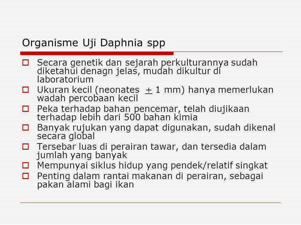 Organisme Uji Daphnia spp  Secara genetik dan sejarah perkulturannya sudah diketahui denagn jelas, mudah dikultur di laboratorium  Ukuran kecil (neo