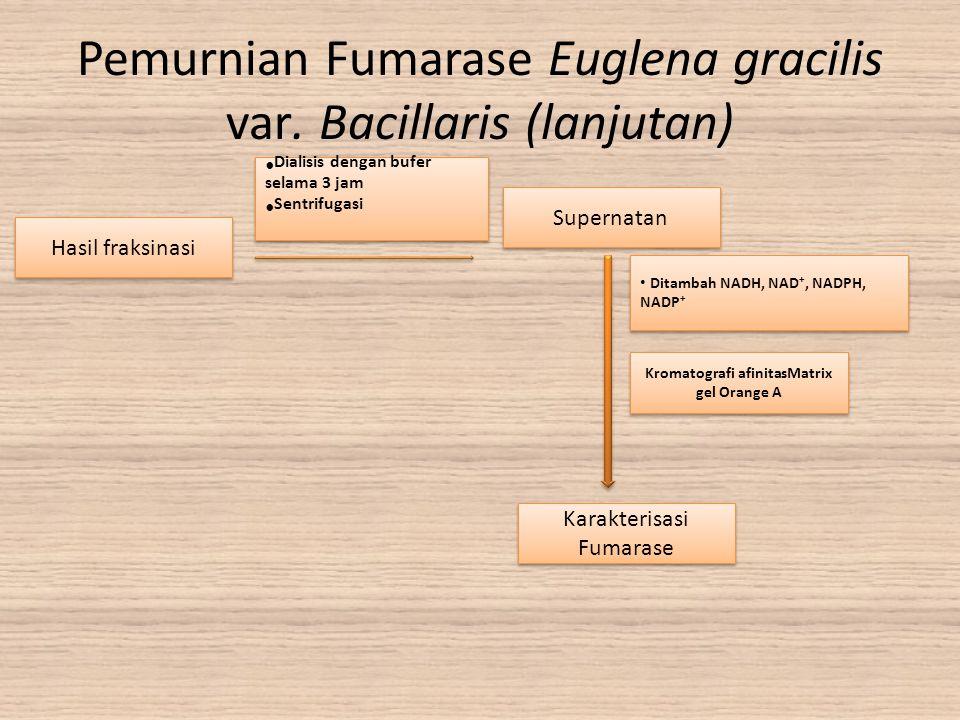 Hasil fraksinasi Supernatan Dialisis dengan bufer selama 3 jam Sentrifugasi Dialisis dengan bufer selama 3 jam Sentrifugasi Ditambah NADH, NAD +, NADP