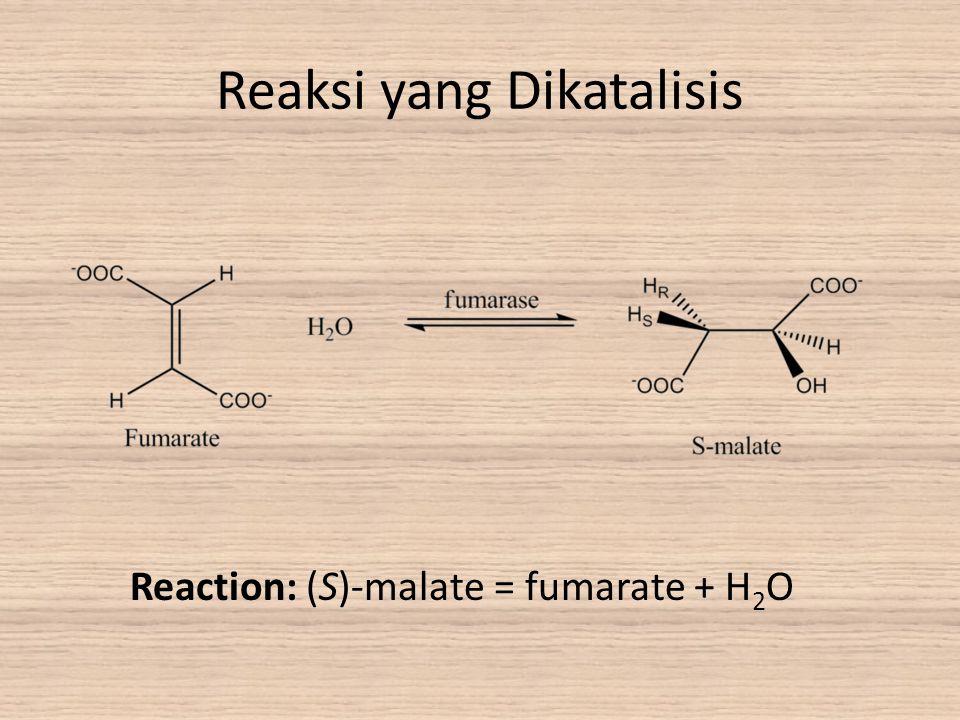 Reaksi yang Dikatalisis Reaction: (S)-malate = fumarate + H 2 O