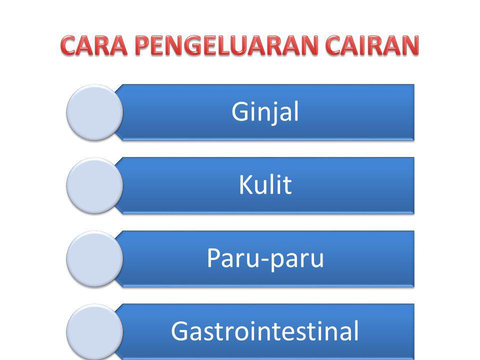 Ginjal Kulit Paru-paru Gastrointestinal