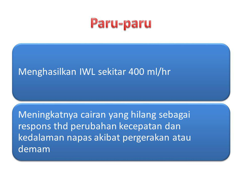 Menghasilkan IWL sekitar 400 ml/hr Meningkatnya cairan yang hilang sebagai respons thd perubahan kecepatan dan kedalaman napas akibat pergerakan atau
