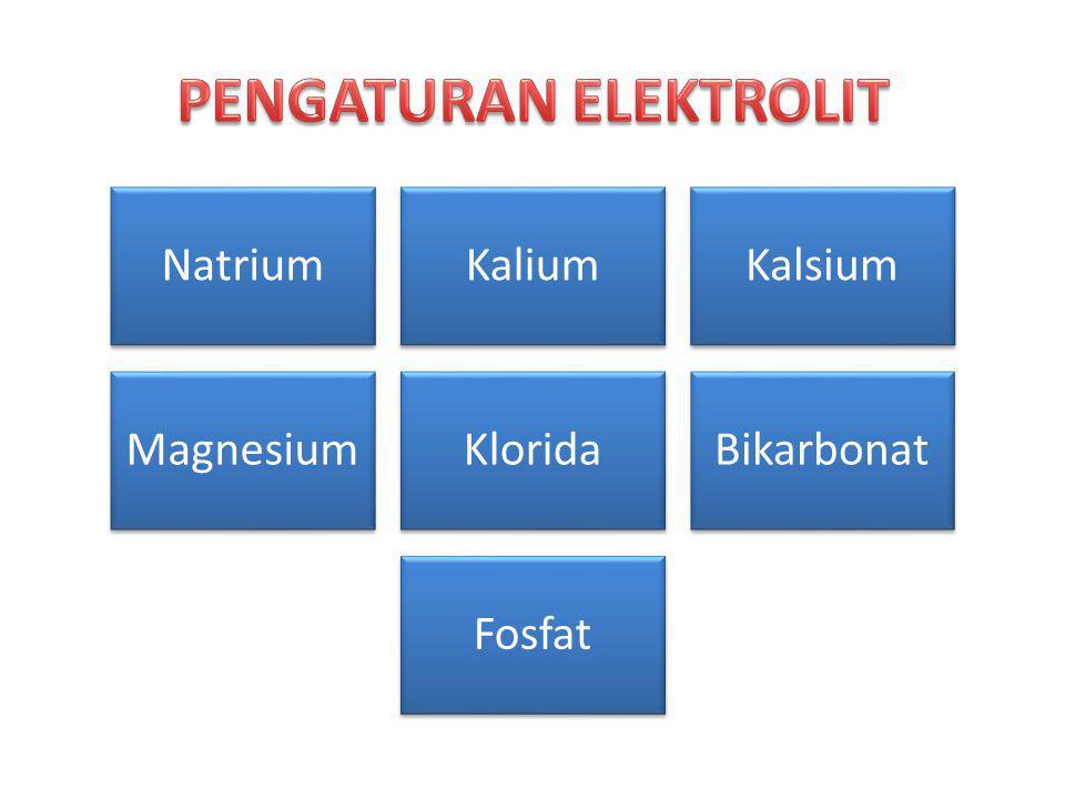 NatriumKaliumKalsium MagnesiumKloridaBikarbonat Fosfat
