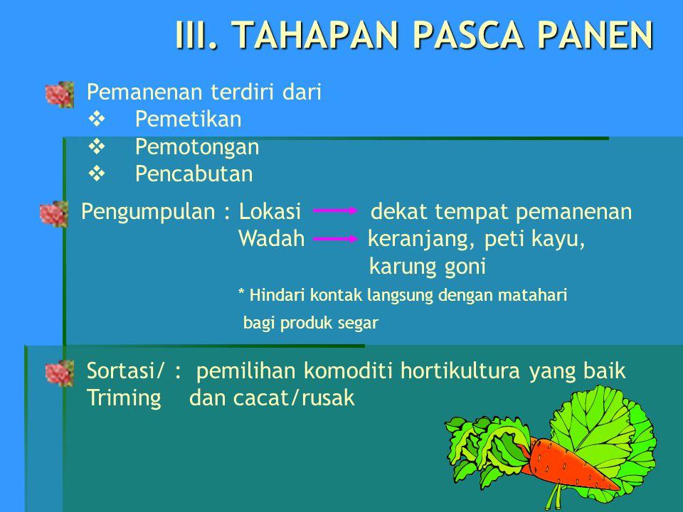 III. TAHAPAN PASCA PANEN Pemanenan terdiri dari  Pemetikan  Pemotongan  Pencabutan Sortasi/ : pemilihan komoditi hortikultura yang baik Triming dan