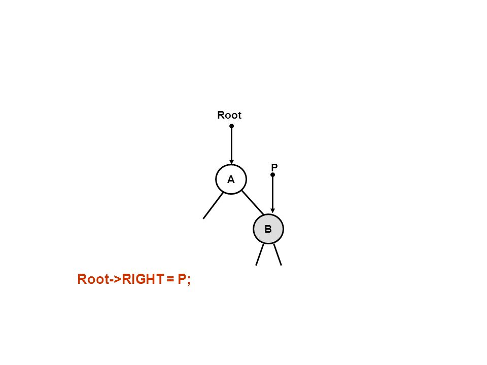 B A P Root->RIGHT = P;