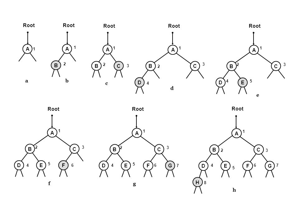 EDF BC G A H Root h 1 23 4 5 67 8 EDF BC G A g 1 23 4 5 6 7 EDF BC A f 1 23 4 5 6 ED BC A e 1 23 45 B A C B A A ab c 1 D BC A d 1 2 3 4 1 2 1 2 3