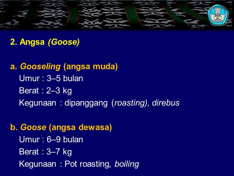 2.Angsa (Goose) a.