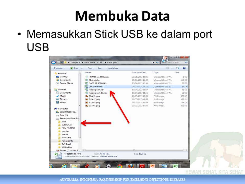 AUSTRALIA INDONESIA PARTNERSHIP FOR EMERGING INFECTIOUS DISEASES Membuka Data Memasukkan Stick USB ke dalam port USB