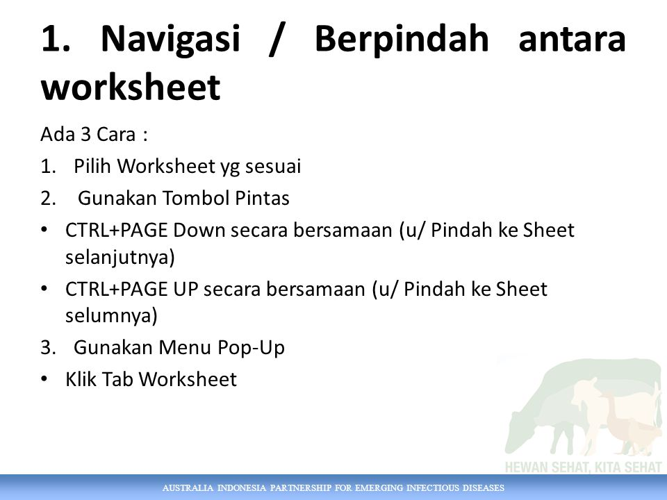 AUSTRALIA INDONESIA PARTNERSHIP FOR EMERGING INFECTIOUS DISEASES 1. Navigasi / Berpindah antara worksheet Ada 3 Cara : 1.Pilih Worksheet yg sesuai 2.G