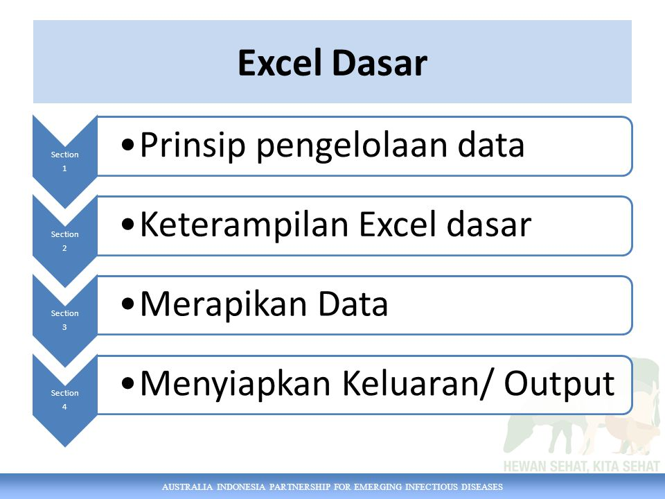 AUSTRALIA INDONESIA PARTNERSHIP FOR EMERGING INFECTIOUS DISEASES Excel Dasar Section 1 Prinsip pengelolaan data Section 2 Keterampilan Excel dasar Section 3 Merapikan Data Section 4 Menyiapkan Keluaran/ Output