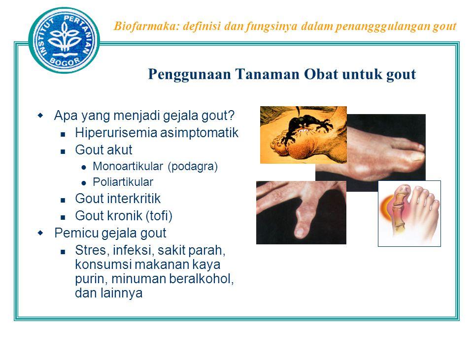 Biofarmaka: definisi dan fungsinya dalam penangggulangan gout Penggunaan Tanaman Obat untuk gout  Apa yang menjadi gejala gout? Hiperurisemia asimpto