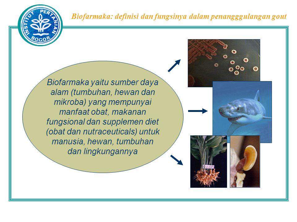 Biofarmaka: definisi dan fungsinya dalam penangggulangan gout Tumbuhan sebagai Sumber Biofarmaka  Adanya fungsi khasiat, rasa, fungsi energi dll dari suatu bahan disebabkan oleh adanya senyawaan kimia tertentu  Komponen kimia dalam tanaman (organisme): Metabolit primer (protein, lemak, karbohidrat, dan asam nukleat) Metabolit sekunder (alkaloid, flavonoid, terpenoid dll)