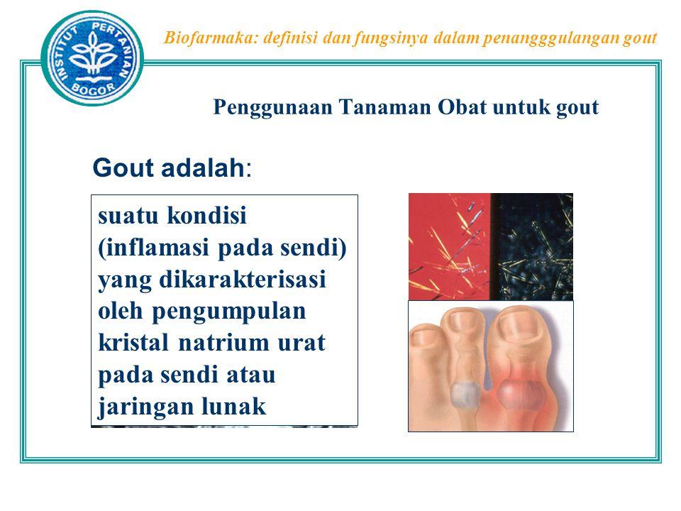 Biofarmaka: definisi dan fungsinya dalam penangggulangan gout Penggunaan Tanaman Obat untuk gout  Metabolisme asam urat